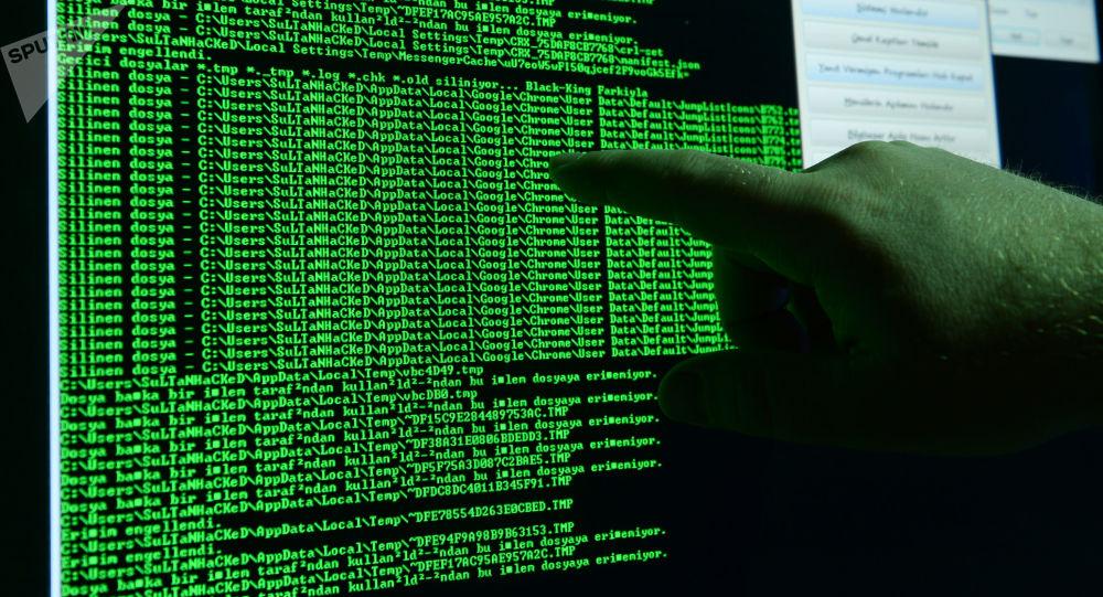 俄国家杜马议员:中俄有意分享网络安全和反腐领域的经验