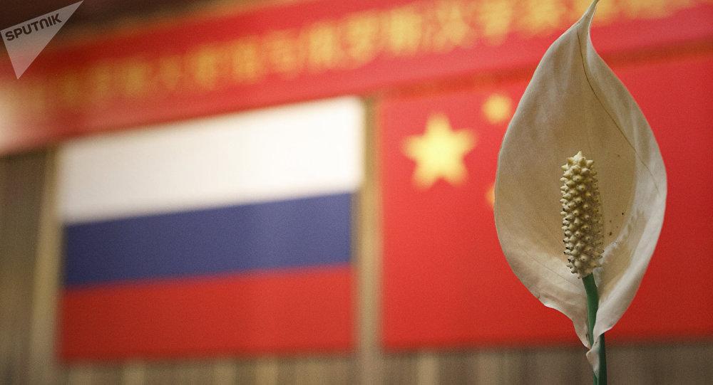 俄驻华大使:俄中在研究新建两个地方合作机制