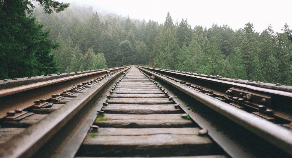 媒体:俄中运输企业制定出新的铁路运输线路