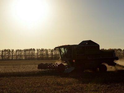 """俄罗斯农业""""集团签署对华出口油粕油渣协议"""