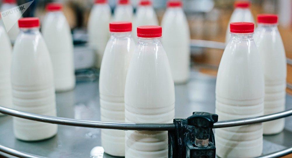 蒙牛集团与中鼎牧业联手打造中俄奶业种养加全链条