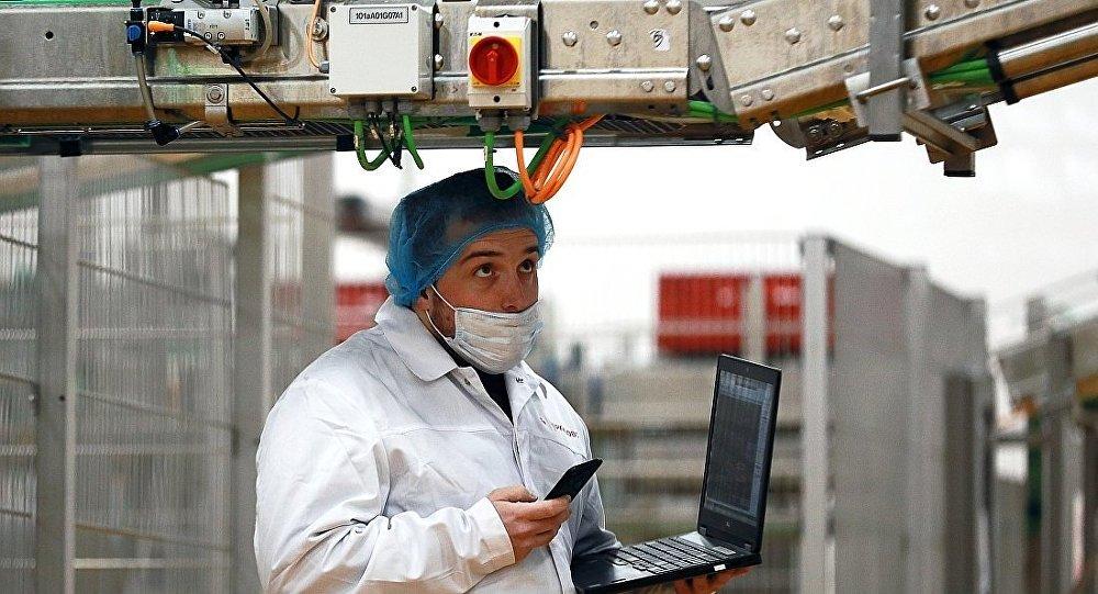 专家:中国到年底有望成为俄罗斯禽肉三大进口国之一