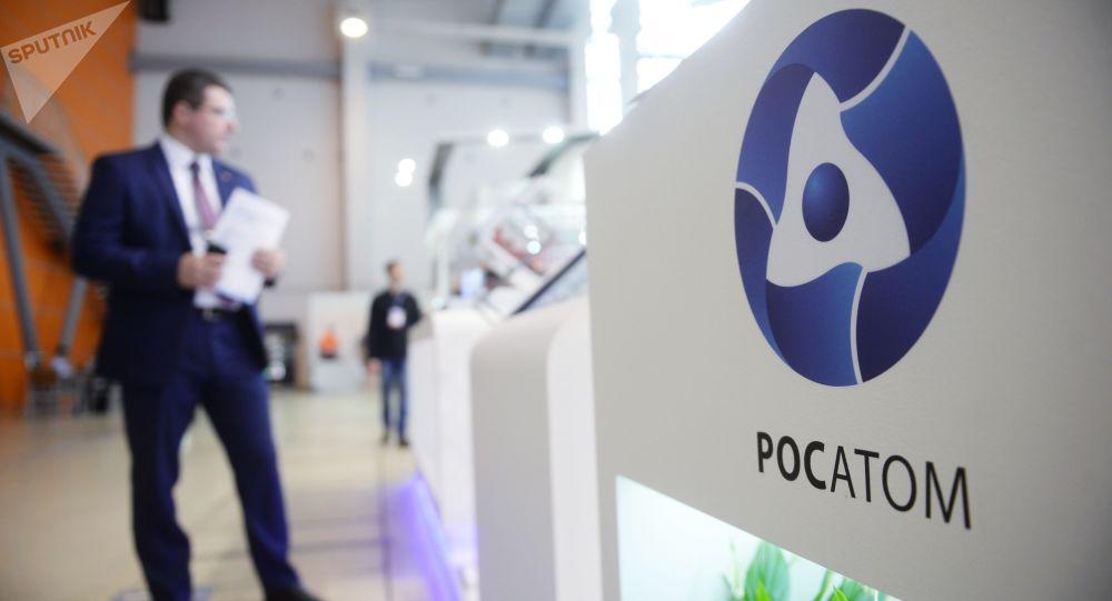 俄原子能集团:俄罗斯将为中国快中子反应堆项目提供支持