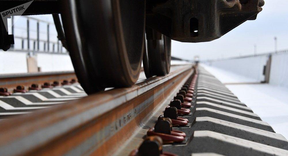 2019年底前俄铁路物流公司将向中国发出第一列冷藏集装箱列车