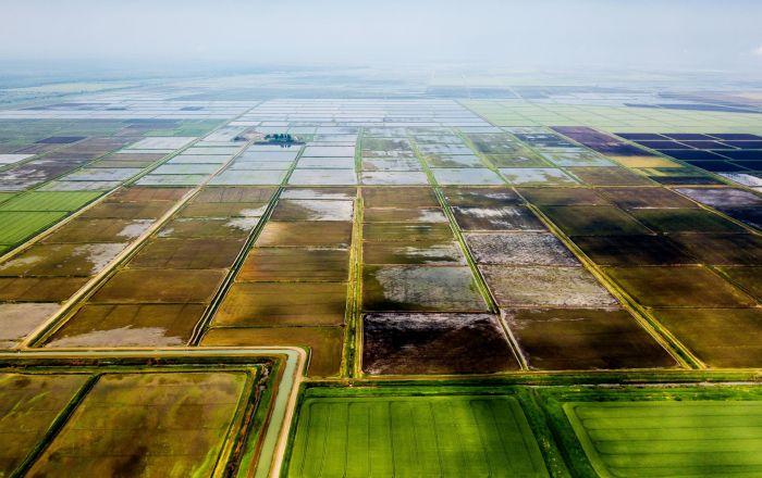 俄行政长官:楚瓦什共和国计划与中国在农工综合体领域展开合作