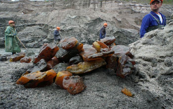 加里宁格勒众多琥珀企业有意与中国合作