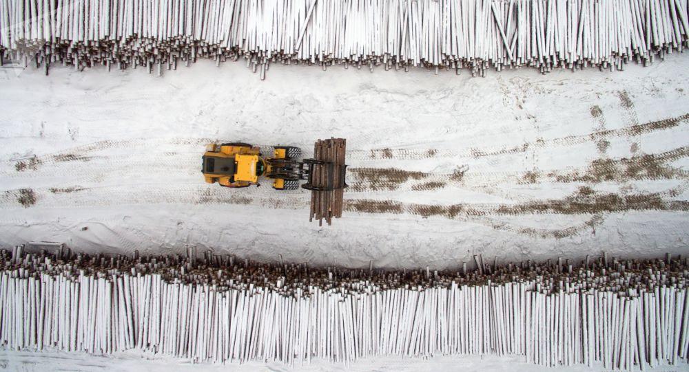 俄罗斯稳居中国进口针叶树锯材的最大来源国地位