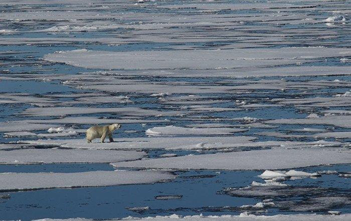 专家:俄中正在讨论联合参加国际北极站项目问题